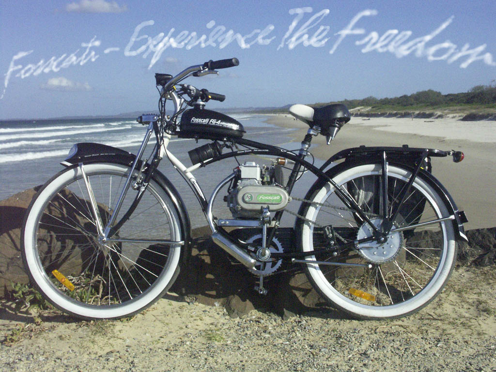 622874e7052 Disasterous news from Schwinn for 2010 range | Motorized Bicycle ...