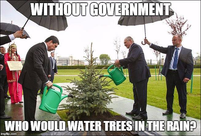 Without_Government_Who_Would_Water_Trees_In_The_Rain_4b845.jpg