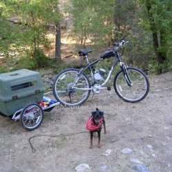 Motorized bike: Schwinn Skyliner with trailer