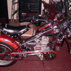 HPIM0550