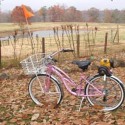 2007 Schwinn Ladies 7 speed