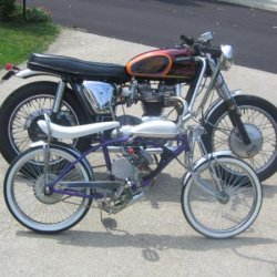 my schwinn 49 c.c. motored bike, and my 66 triumph 650 c.c. bonneville