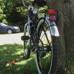 Classic Cycle  - Skywawk 48cc   -02