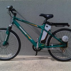 Currie Mongoose 450 watt ebike
