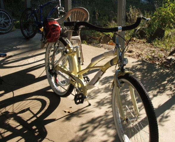 2007 Ladies Sun Retro 7 speed